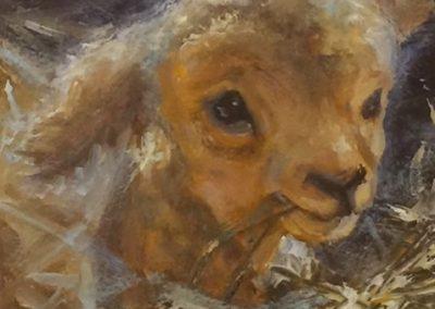 Teenie Weenie Lamb #1